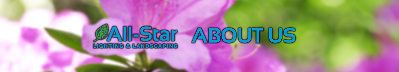 All Star Lighting Landscaping Mabout Us